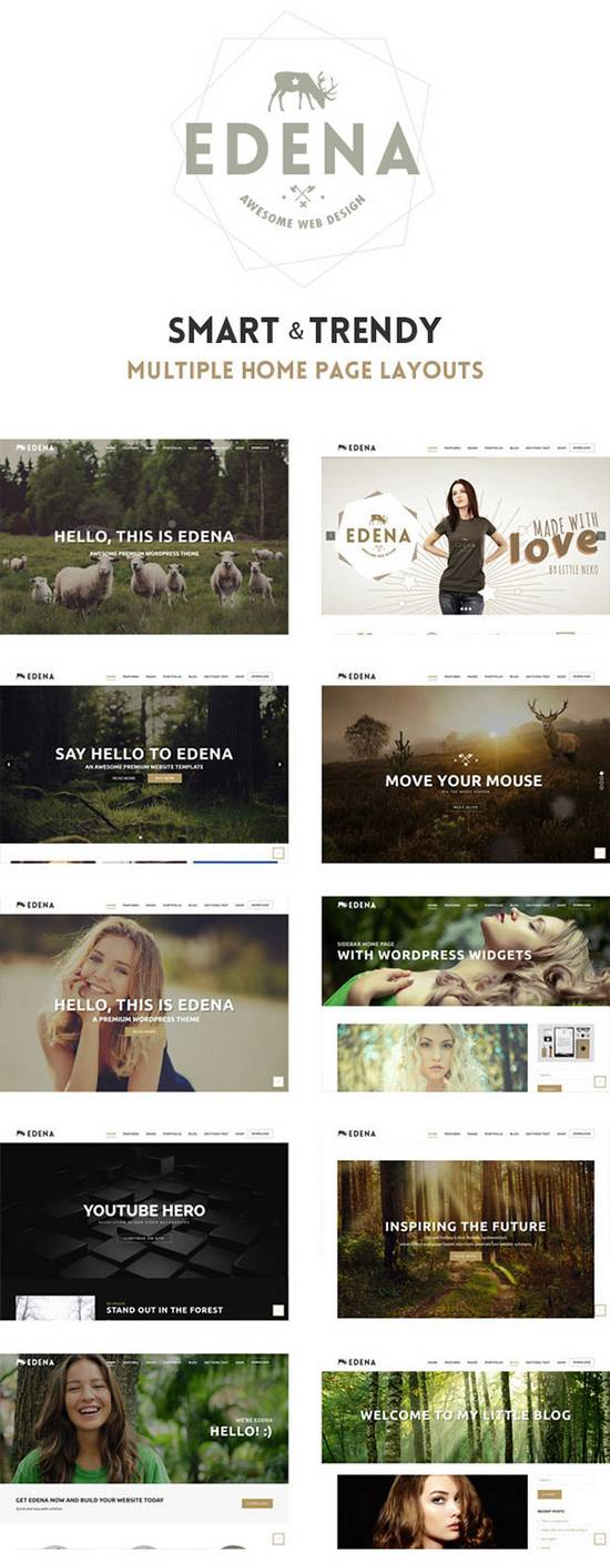 Edena - Новая премиум-тема WordPress