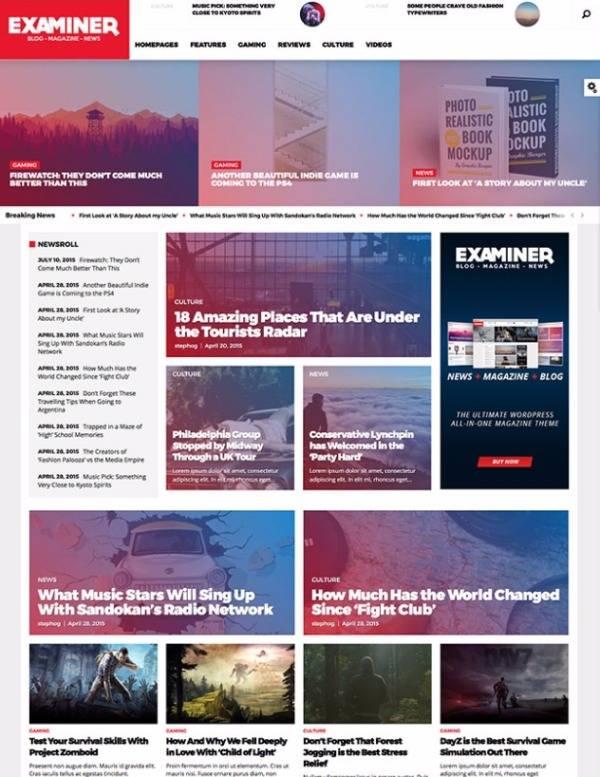 Examiner - Журнальная тема WP