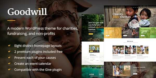 Goodwill - Многоцелевая фандрайзинговая тема WP