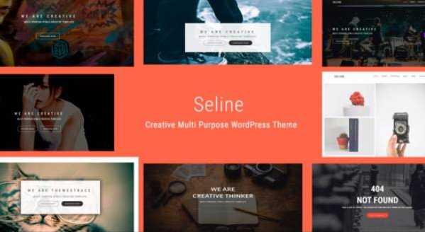 Seline - Творческая многопользовательская тема WordPress