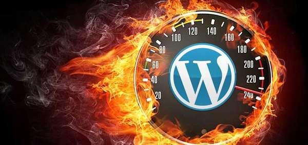 Самые быстрые и оптимизированные темы WordPress на ThemeForest