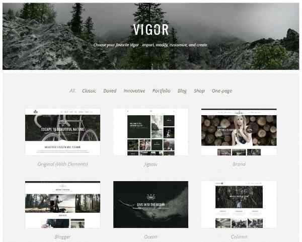 Vigor - новая мульти-концептуальная тема WP