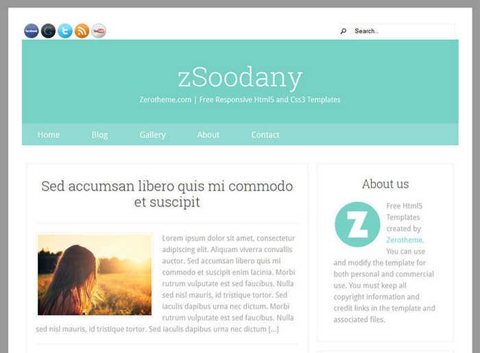 zSoodany - шаблон html5