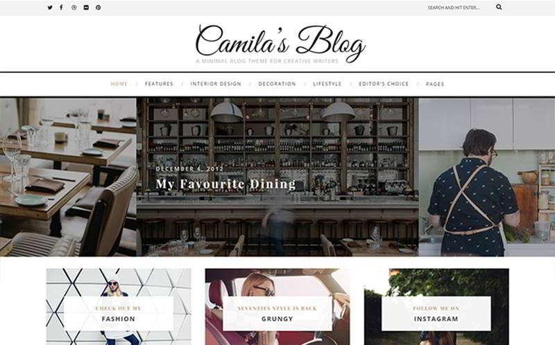 Camila - шаблон WordPress блога